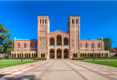 American Collegiate в University of California, Los Angeles